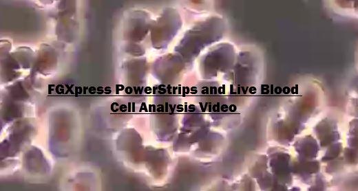 Live Blood Analysis confirms the effectiveness of FGX PowerStrips